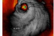 "Сателит снима демонски лице, ""Матеј"" ураган"