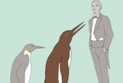 Ученые обнаружили останки пингвина-гиганта