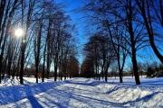 Климат Черноземья: воронежский февраль получился очень контрастным