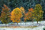Погода на Урале: капризное предзимье вцепилось и не отпускает