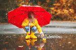 Погода в Москве: дожди и резкое понижение давления